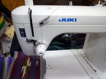 P1000205.JPG